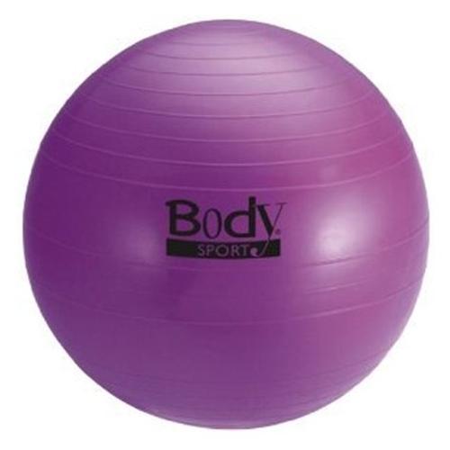 Body Sport Exercise Ball At Healthykin Com