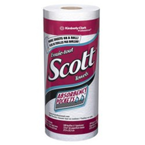 Scott Paper Towels: Scott Paper Towels At HealthyKin.com